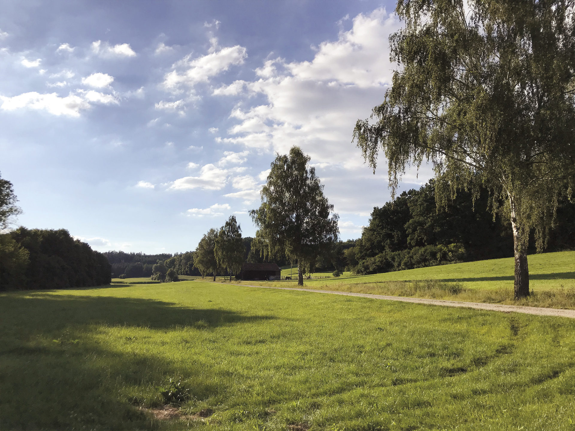 Klingenbach in Biberbach